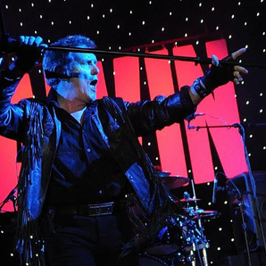 Glam Rock Star, Alvin Stardust